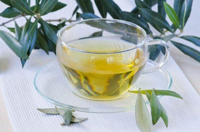 infusion de olivo y espino blanco