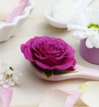 infusion de petalos de rosa