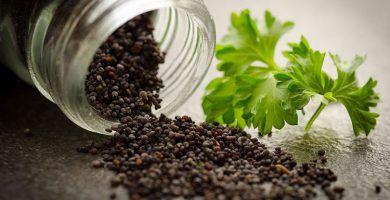 infusion de semillas de amapola