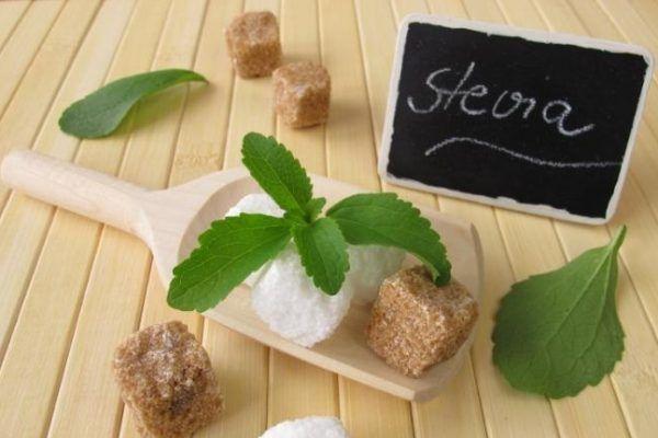 infusion de stevia