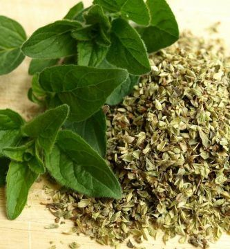 infusion de oregano