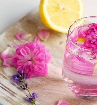 infusion de rosas