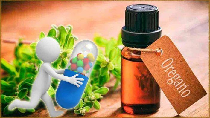 Aceite esencial de ajo como antibiotico natural