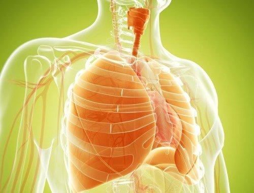 aceite de ajedrea para vias respiratorias