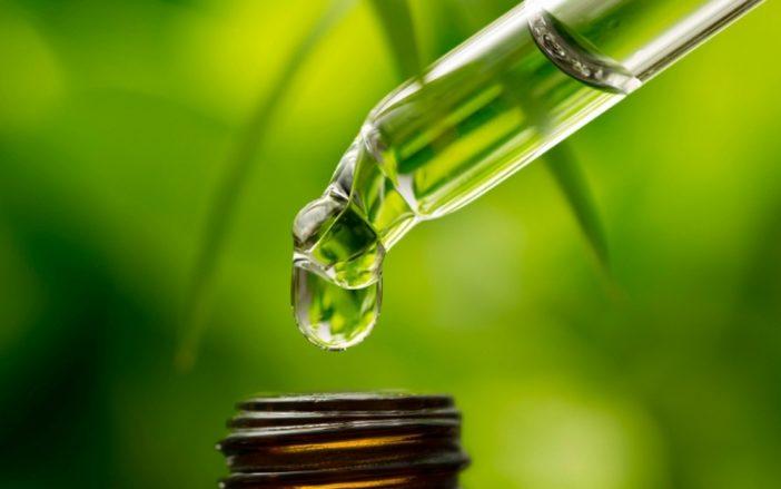 aceite esencial de te verde