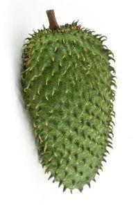 planta de Guanábana